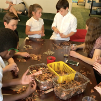20,000 Pennies: How a Book Club Transformed our School Community